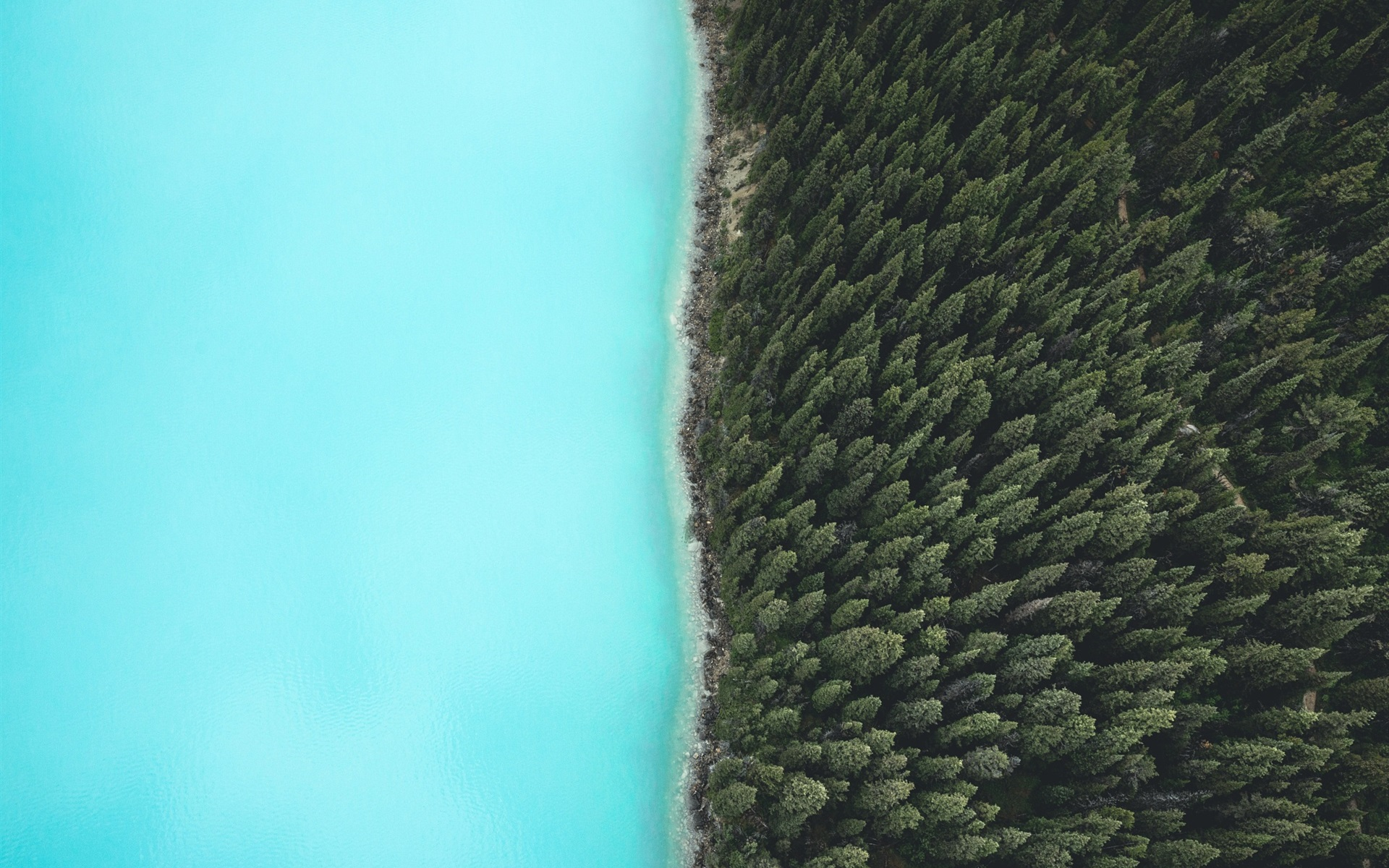 Cute Love Wallpaper Iphone 4s Wallpaper Forest Trees Lake Top View 1920x1200 Hd
