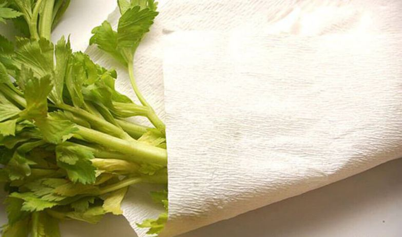 celery cover with coffee filter
