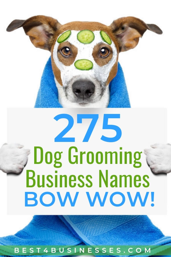275 Creative Dog Grooming Business Names - Bow Wow!