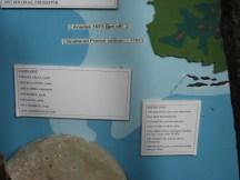 Antigua Ship Wrecks