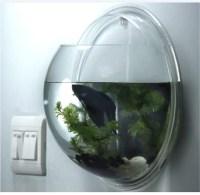 Wall Mounted Fish Bowl Bubble Aquarium | Aquarium Design Ideas