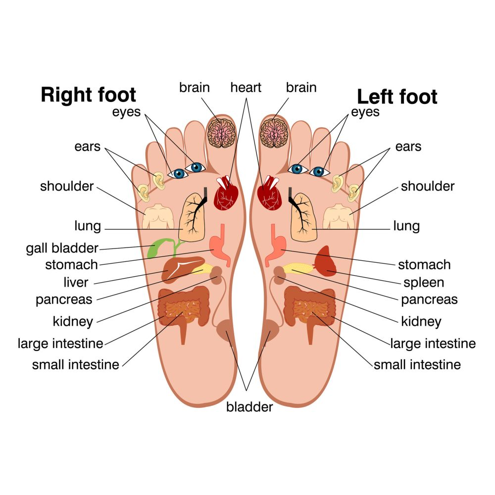 medium resolution of foot pain pressure points