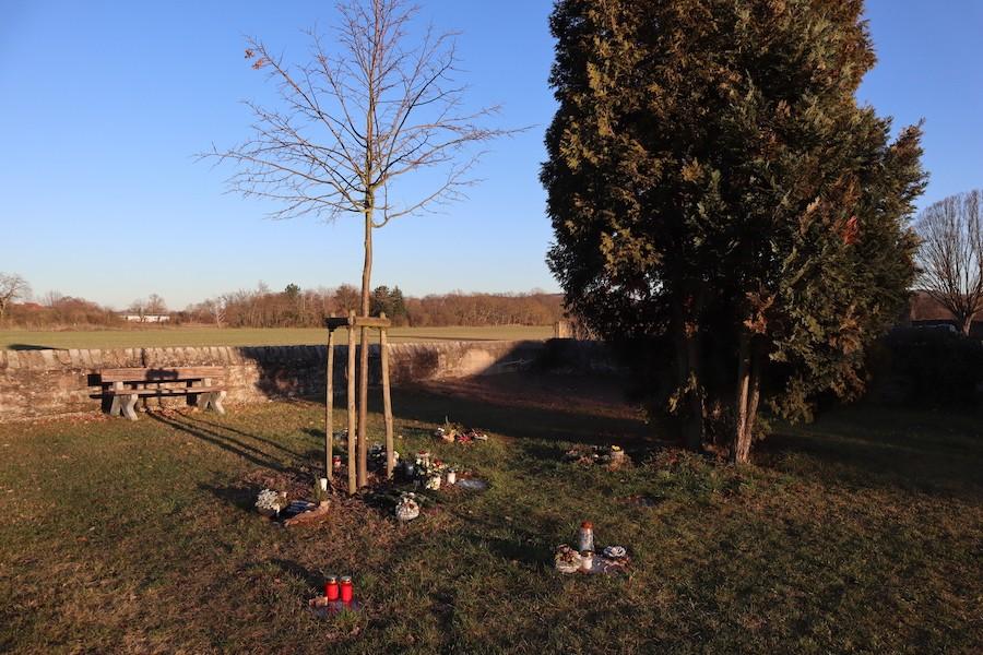 Friedhof Staffort - Baumgräber