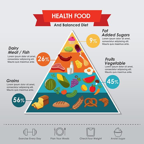 Health food and balanced diet design