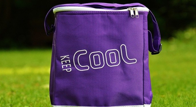 best backpack cooler