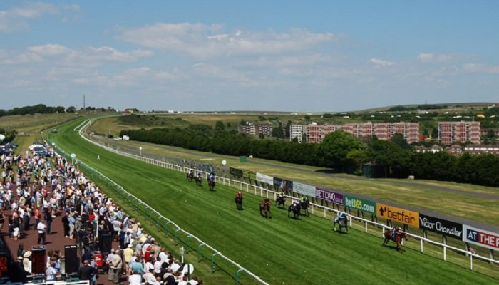 Brighton Racecourse Stats 1