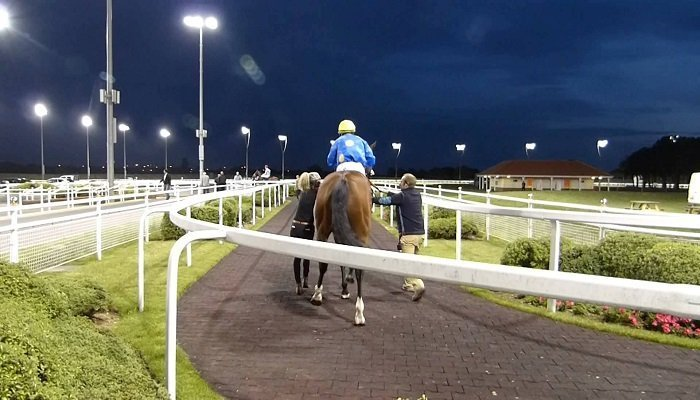 Chelmsford City Racecourse Stats 1