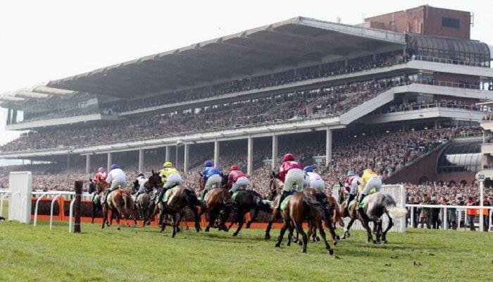 Cheltenham Racecourse Stats 2