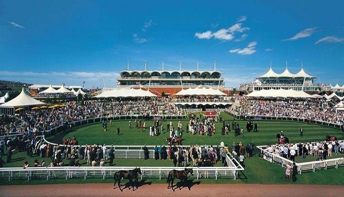 Goodwood Racecourse Stats 2