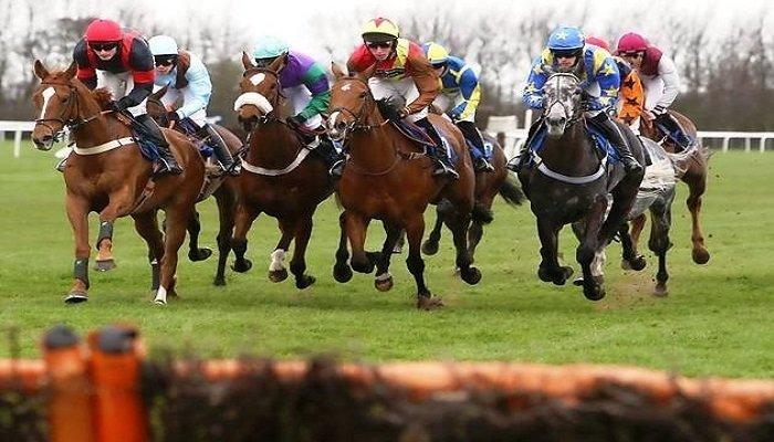 Huntingdon Racecourse Stats 1