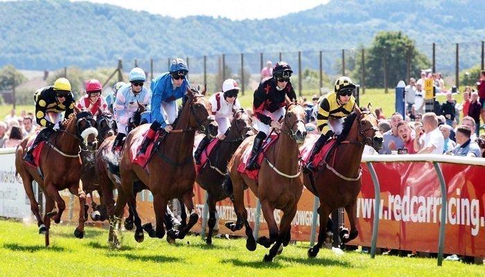 Redcar Racecourse Stats 1