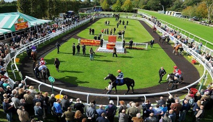 Salisbury Racecourse Stats 1
