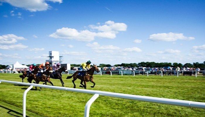 Stratford-on-Avon Racecourse Stats 1