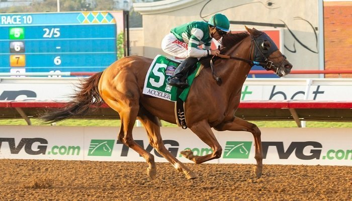 Accelerate Still the Favourite to Win the 2018 Breeders' Cup 2