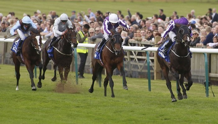 Ante Post Betting on the Dewhurst Stakes 2