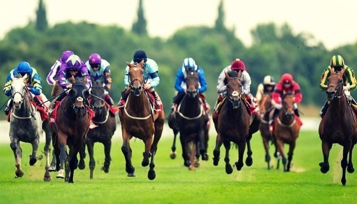 Today's Racing Tips 1