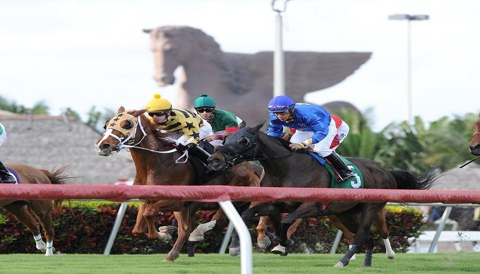 Ante Post Betting Trends on the Pegasus World Cup 1