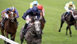 coronation stakes betting