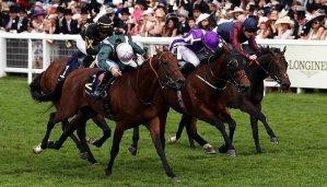 Diamond Jubilee Stakes 12