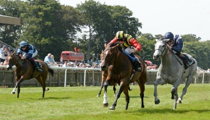 Falmouth Stakes 1