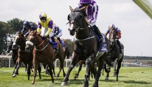 Betting on the July Cup 8