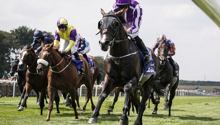 Betting on the July Cup