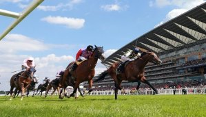 King George VI and Queen Elizabeth Stakes 11