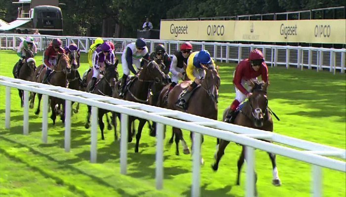 Ascot Gold Cup 1