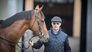 Will O'Brien be the Top Trainer at Royal Ascot? 18