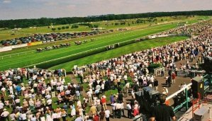 Betway Summer Plate Handicap Chase Tips 2