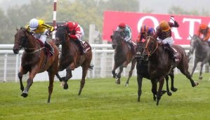 Latest Odds on the Qatar Goodwood Cup 9