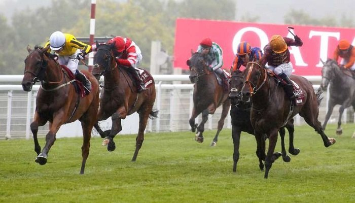 Latest Odds on the Qatar Goodwood Cup 1