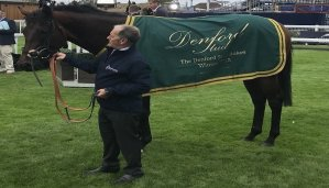 The Value is Each-Way Betting in the Denford Stakes 14