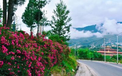 Nói đi Bhutan du lịch là sai lầm, đi trải nghiệm hạnh phúc ở Bhutan đúng hơn