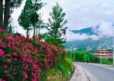 Tour văn hóa Bhutan 10N9D