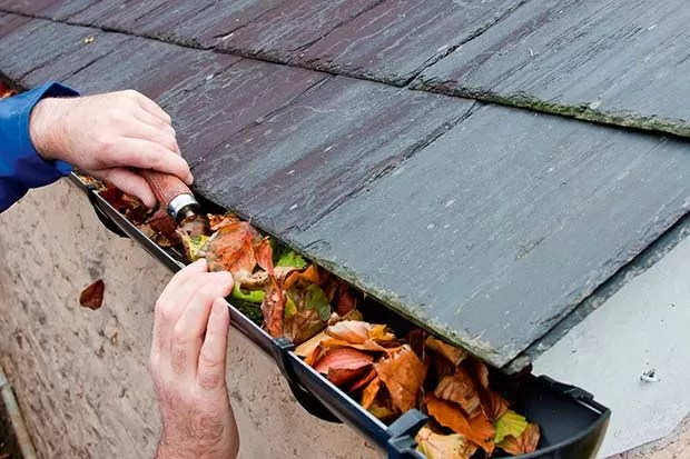 Repairing-Gutters-Clearing-Leaves