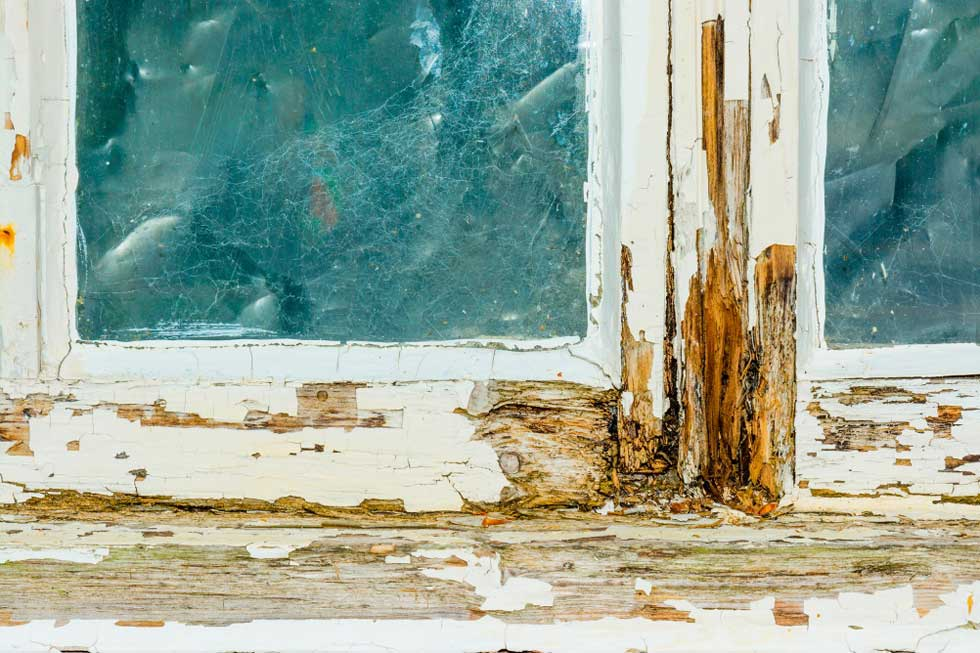 Timber-Decay-Window-Frame