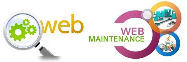 best website maintenance services in hyderabad india