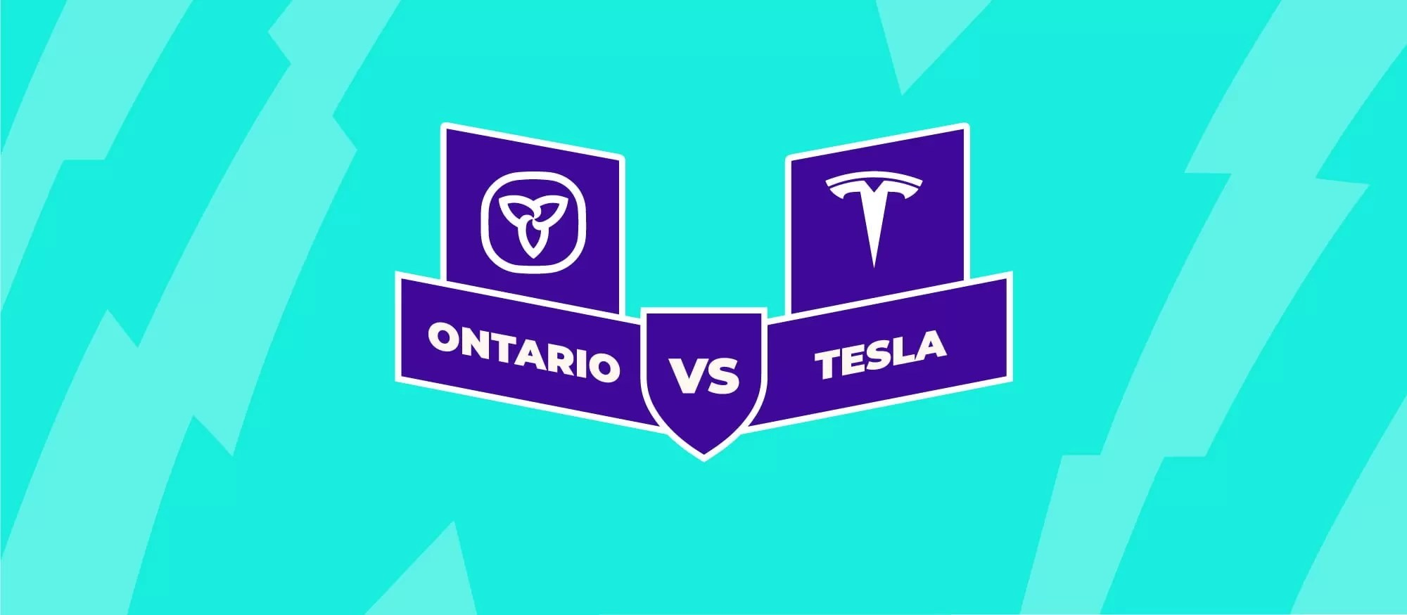 2018 08 20 Tesla Sues Ontario Government 1