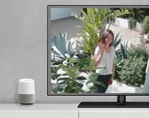 Google Assistant Updates & Smart Home Security