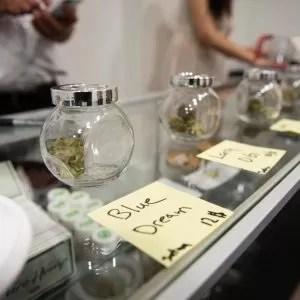 Waterloo Region faces decision on pot shops