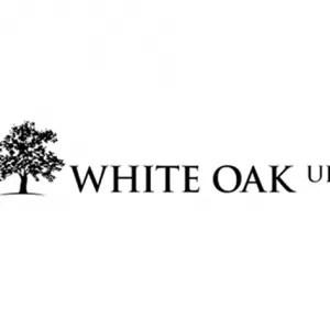 Dallmeier partners with White Oak UK for vendor finance programme