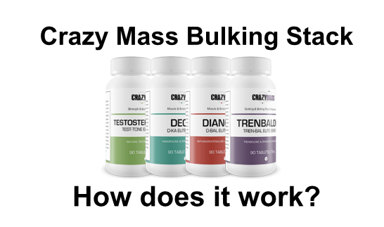 crazy mass bulking stack results
