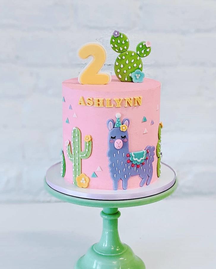 Refined Alpaca Cake