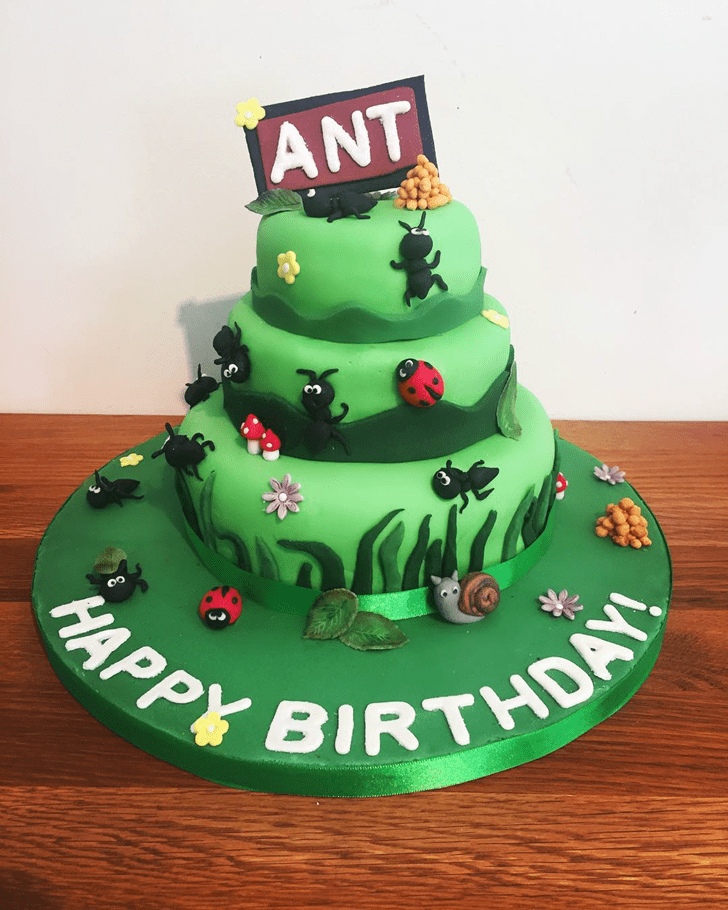 Beauteous Ant Cake