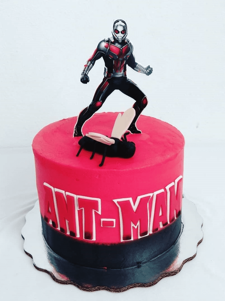 Admirable Antman Cake Design