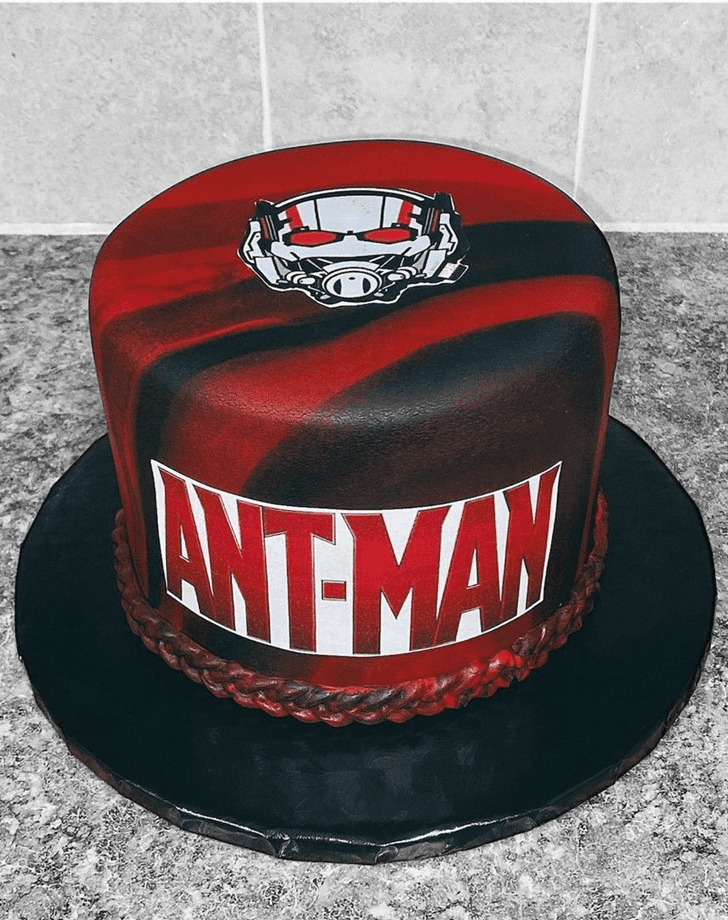 Adorable Antman Cake