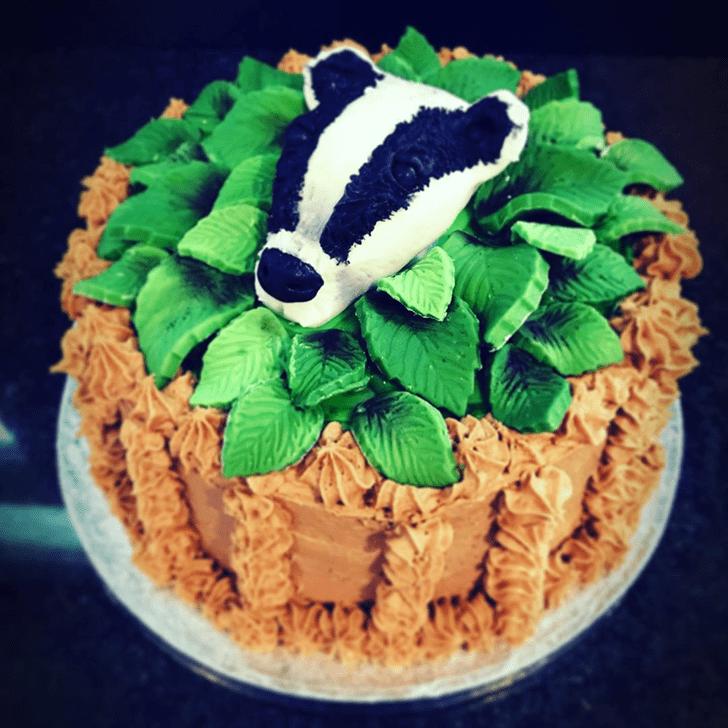 AnBadgeric Badger Cake