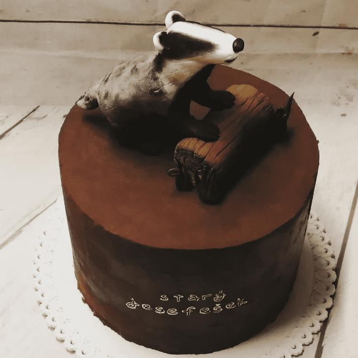 Bewitching Badger Cake
