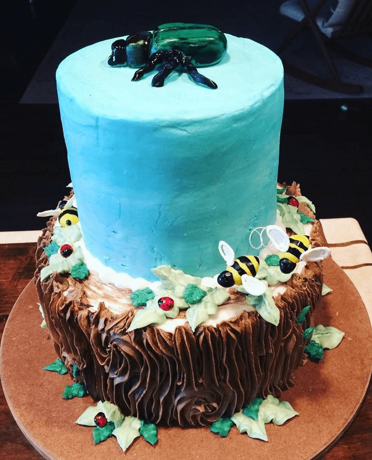 Adorable Beetle Cake